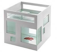 Fish Hotel Fish Bowl