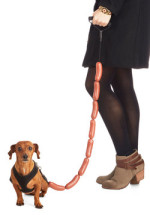 Sausage Dog Leash