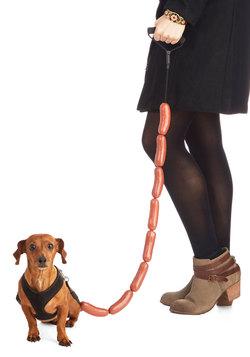 Sausage Dog Leash